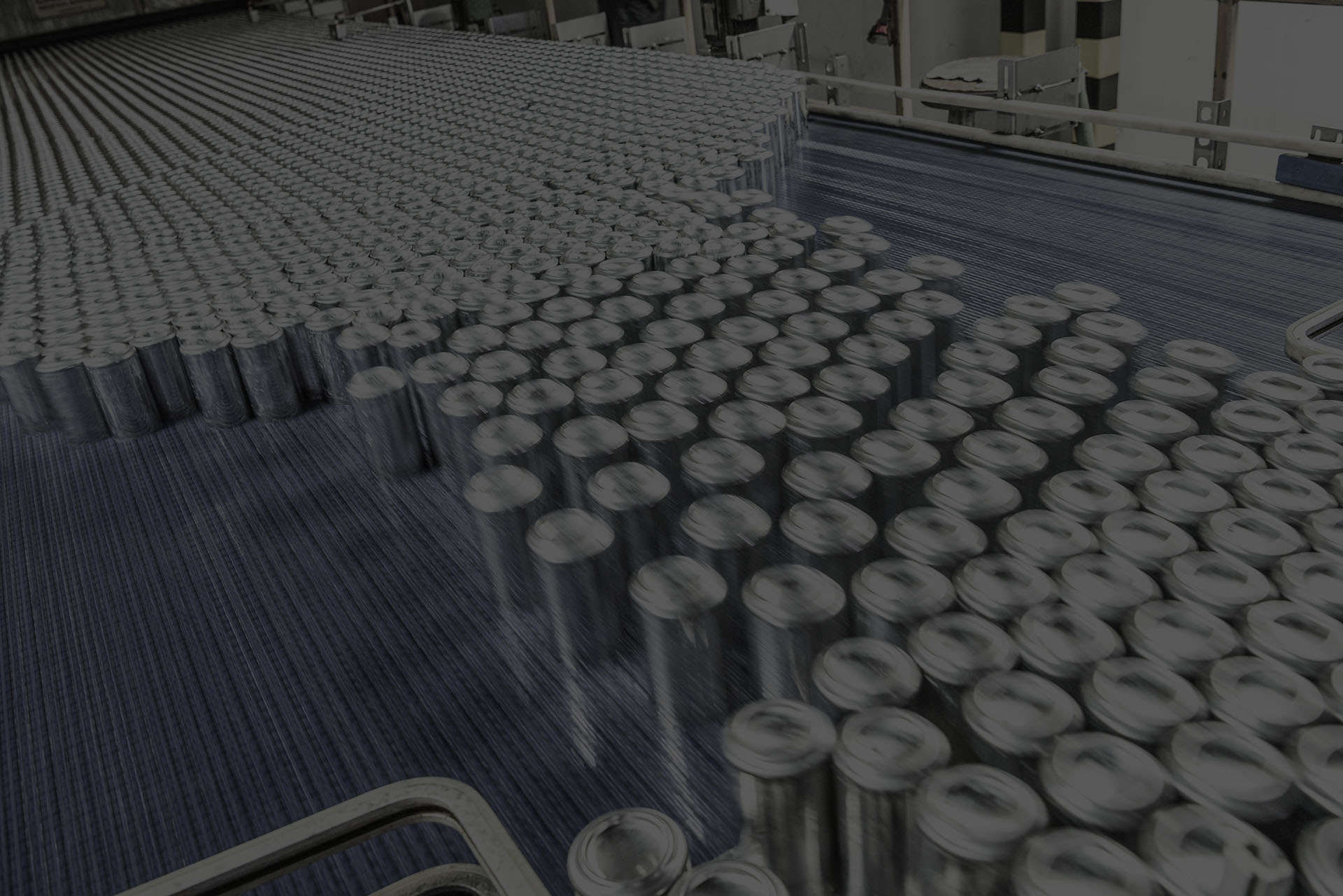 Aluminium cans moving along conveyor belt in processing plant